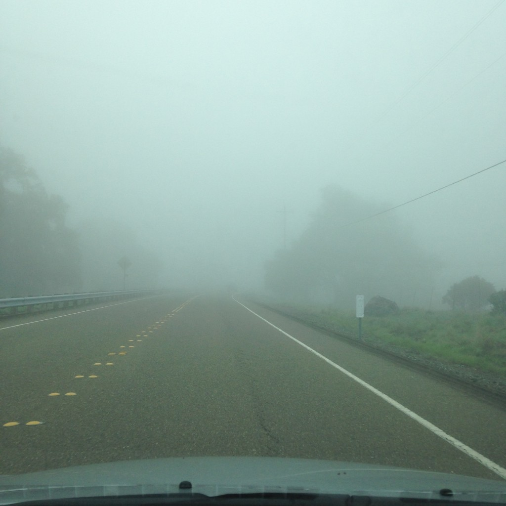 Lake Sonoma 50 - car fog